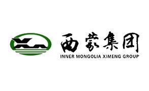 成功案例:内蒙古西蒙集团有限公司
